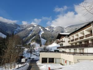 Apartment HOLIDAY - Ski-in/Ski-out