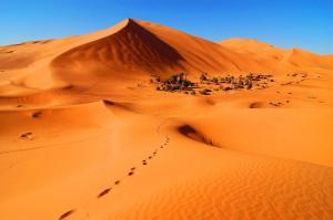 Riad Desert Camel, Hotels  Merzouga - big - 117