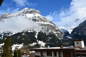 Hotel Hirschen - Grindelwald, Отели  Гриндельвальд - big - 44