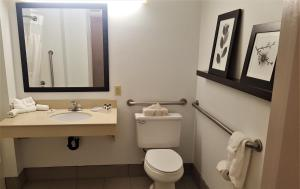 King Guest Room with Roll-In Shower - Non-Smoking