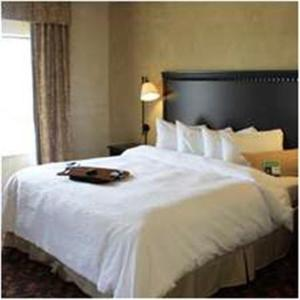 Hampton Inn and Suites Dallas-Arlington North-Entertainment District