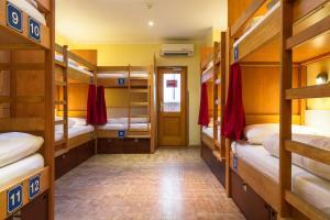 ドミトリールーム 男女共用 ベッド計12台のベッド1台 18〜35歳限定