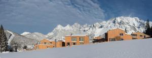 Rittis Alpin Chalets Dachstein, Aparthotels  Ramsau am Dachstein - big - 42
