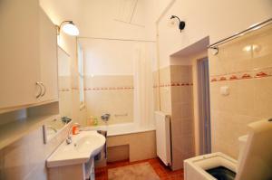 Felicia Apartment, Appartamenti  Budapest - big - 5