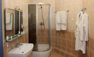 Platinum Hotel, Отели  Запорожье - big - 9