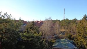 Apartamentai Ramybė, Апартаменты  Нида - big - 24