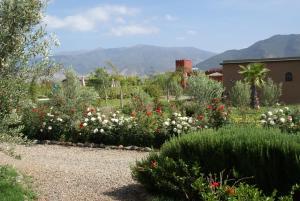 Les Jardins de Bouskiod, Lodges  Amizmiz - big - 18