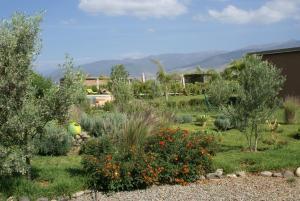 Les Jardins de Bouskiod, Chaty  Amizmiz - big - 20