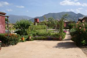 Les Jardins de Bouskiod, Lodges  Amizmiz - big - 27