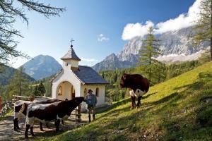 Chalet Kuschelhütte, Chalet  Ramsau am Dachstein - big - 69