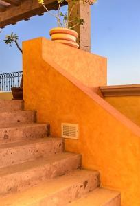 Cabo Paradise Ranch Estate, Prázdninové domy  Cabo San Lucas - big - 36