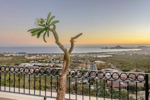 Cabo Paradise Ranch Estate, Prázdninové domy  Cabo San Lucas - big - 44