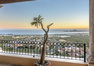 Cabo Paradise Ranch Estate, Prázdninové domy  Cabo San Lucas - big - 50