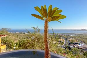 Cabo Paradise Ranch Estate, Prázdninové domy  Cabo San Lucas - big - 69