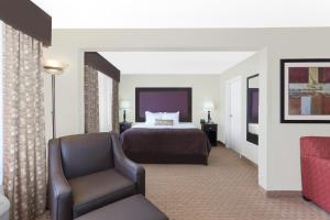 Deluxe King Suite with Sofa Bed - Non-Smoking