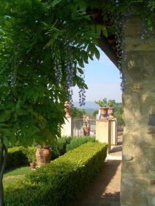 Santa Maria a Poneta, Aparthotels  Barberino di Val d'Elsa - big - 66