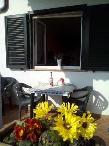 Alba Raimondo House, Апартаменты  Santa Vittoria d'Alba - big - 10
