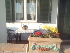 Alba Raimondo House, Апартаменты  Santa Vittoria d'Alba - big - 9