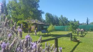 Las Gardenias Cabañas, Лоджи  Сан-Рафаэль - big - 15