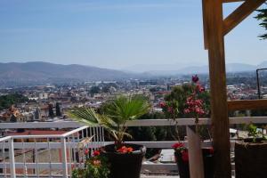 Casa sicarú, Apartmány  Oaxaca City - big - 75