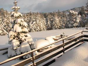 Chalet Four Season, Chalet  Zlatibor - big - 8