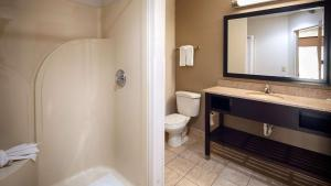 King Suite - Disability Access Roll in Shower