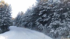 Chalet Four Season, Horské chaty  Zlatibor - big - 13