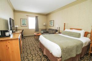 Queen Room with Single Sofa Bed - Non-Smoking