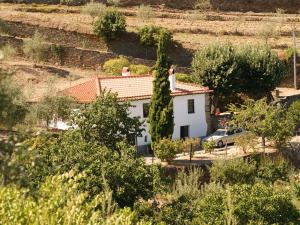 Quinta das Aveleiras, Farmy  Torre de Moncorvo - big - 46