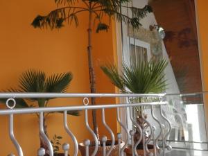 Kristály Apartman, Bed and Breakfasts  Hévíz - big - 101