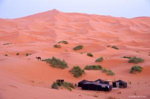 Riad Desert Camel, Hotels  Merzouga - big - 94