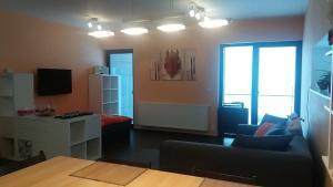 Apartments Klinovec, Apartmány  Loučná pod Klínovcem - big - 38