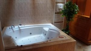 Zámeček Pod Hradem, Hotels  Starý Jičín - big - 16