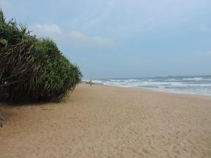 Sea View Beach Hotel, Hotely  Nilaveli - big - 48