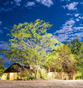 Lesoma Valley Lodge, Chaty  Kasane - big - 6