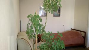 Apartment on Ispanskih Rabochih 35