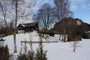 Haus Florentine, Holiday homes  Sankt Gilgen - big - 9
