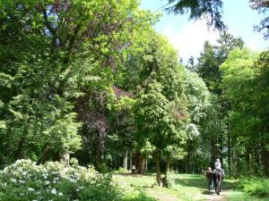Parkhotel Smržovka