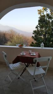 Wine House Apartment Sekulic, Apartmány  Podgorica - big - 16