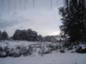 La Roca de la Patagonia, Inns  Villa La Angostura - big - 25