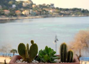 Palermo Mare Holidays