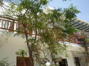 Hotel Maroulis, Hotels  Naxos Chora - big - 18