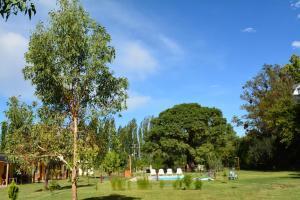 Ayres de Cuyo, Apartments  San Rafael - big - 11