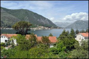 Apartments Jovanovic, Apartmány  Kotor - big - 54