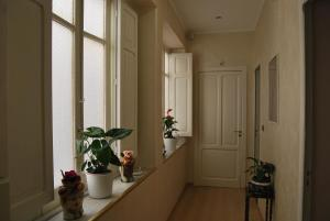 B&B La Finestra sulla Valle, Bed & Breakfasts  Agrigent - big - 61