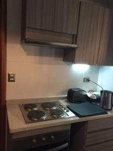 Porhtal, Apartments  Valdivia - big - 26