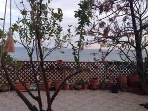 Antonios House, Holiday homes  Archangelos - big - 8