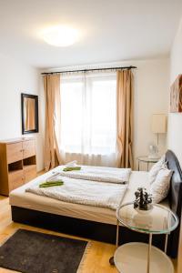 City Elite Apartments, Apartmány  Budapešť - big - 84