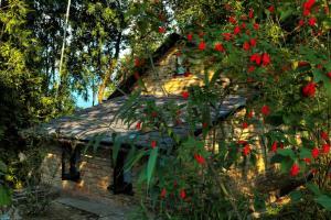Tiger Mountain Pokhara Lodge (3 of 25)