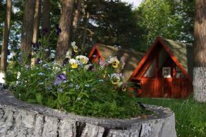 Camping Dragomirna